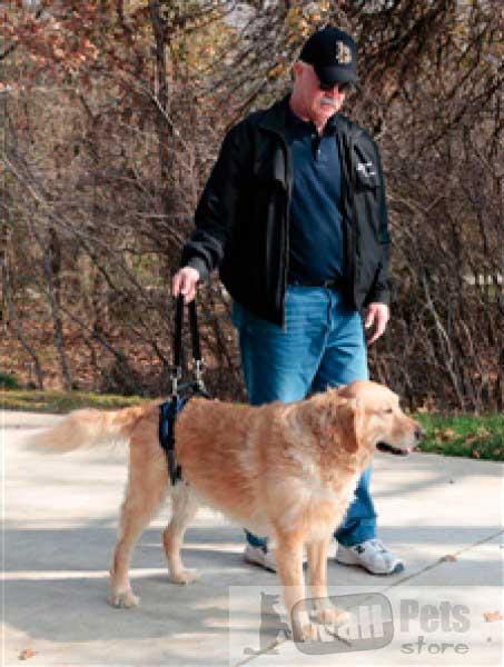 Пояс для пожилых, травмированных собак