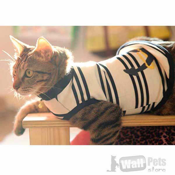 Свитер с воротом в полоску. Одежда для кошек.