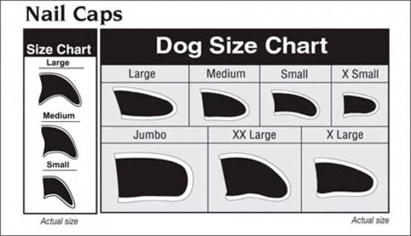 Силиконовые колпачки на когти для собак