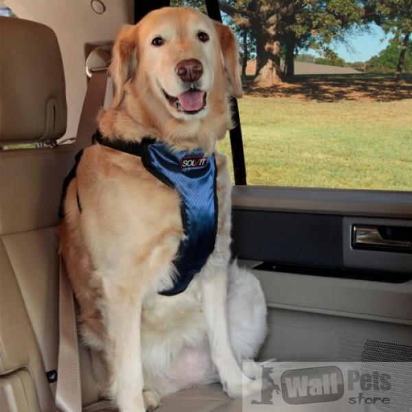 Авто шлейка люкс для очень крупных собак