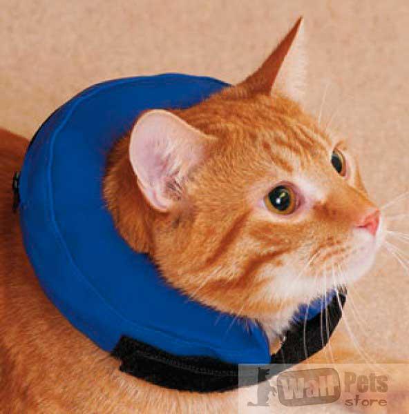 Надувные елизаветинские воротники для кошек