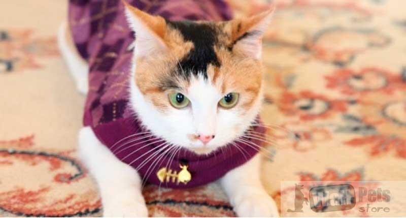 Одежда для кошек, одежда для котов свитер для кошек