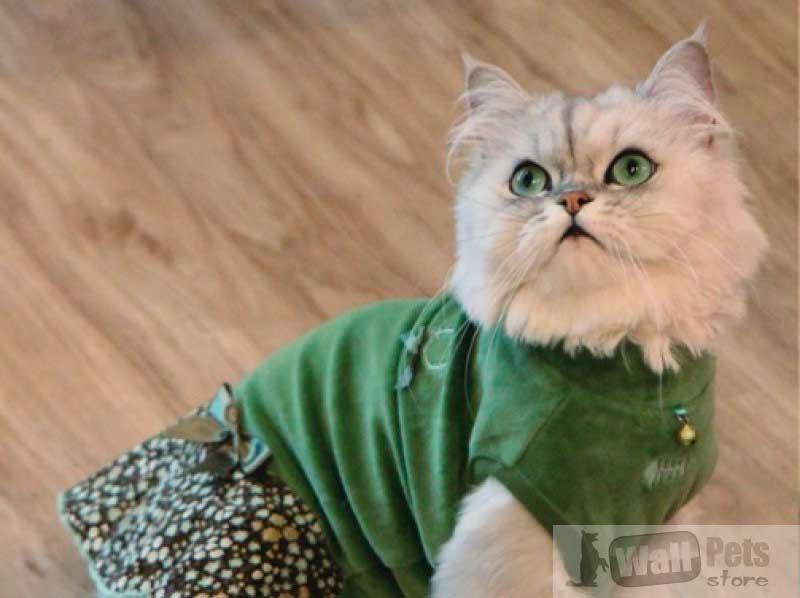 Платье для кошек, одежда для кошек