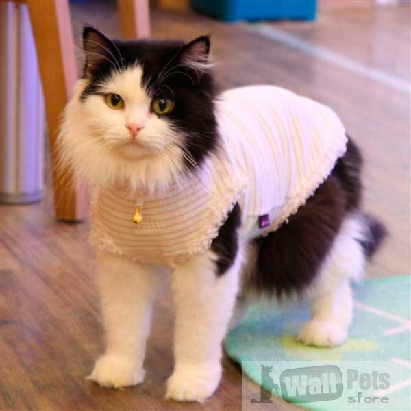 Платье для кошек с кружевом и бисером, одежда для кошек