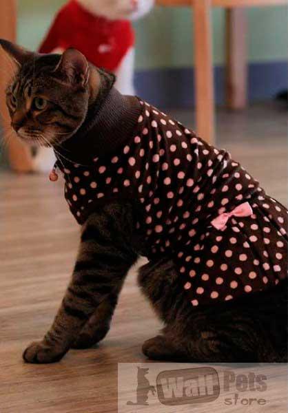 Одежда на кошек платье