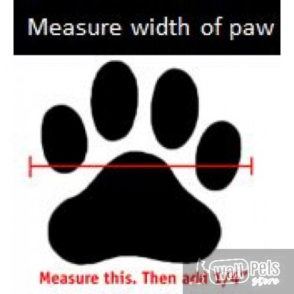Профессиональная обувь для собак, ( Патент США)
