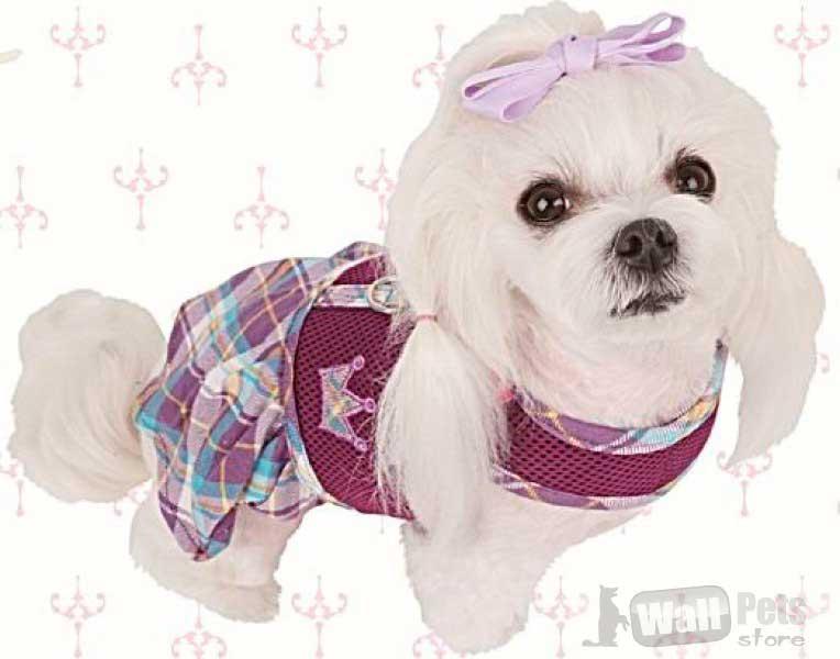 Шлейка для собак принц