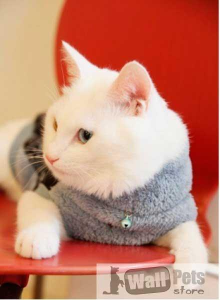 Свитер для кошки ( одежда для кошек, одежда для котов)