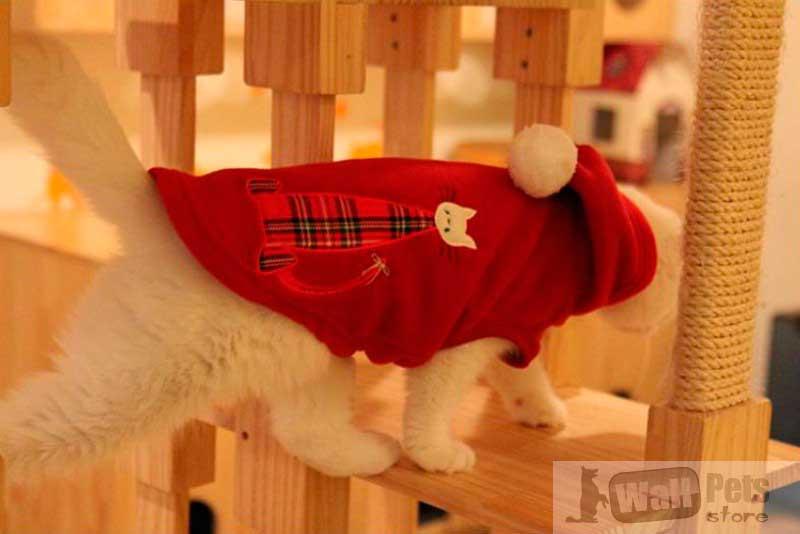 Толстовка с аппликацией, одежда для кошек