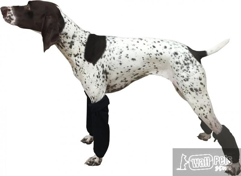 Защитные гетры для собак