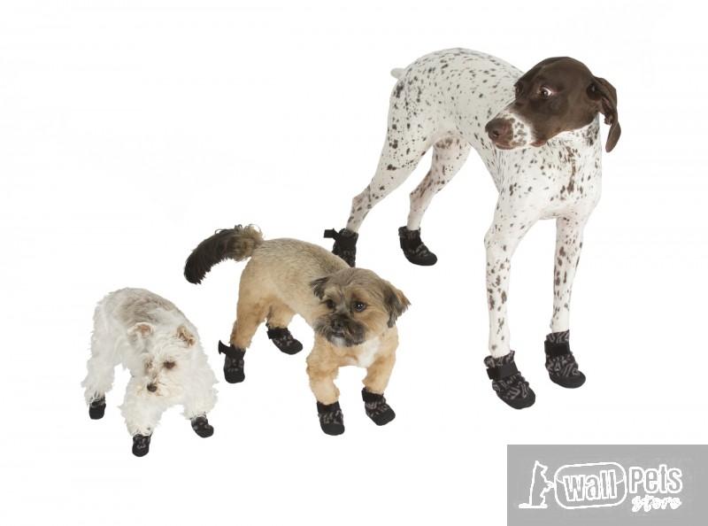 Обувь для собак