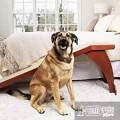 Прикроватный пандус для собак