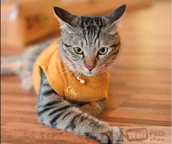 Одежда для кошек, одежда для котов, водолазка