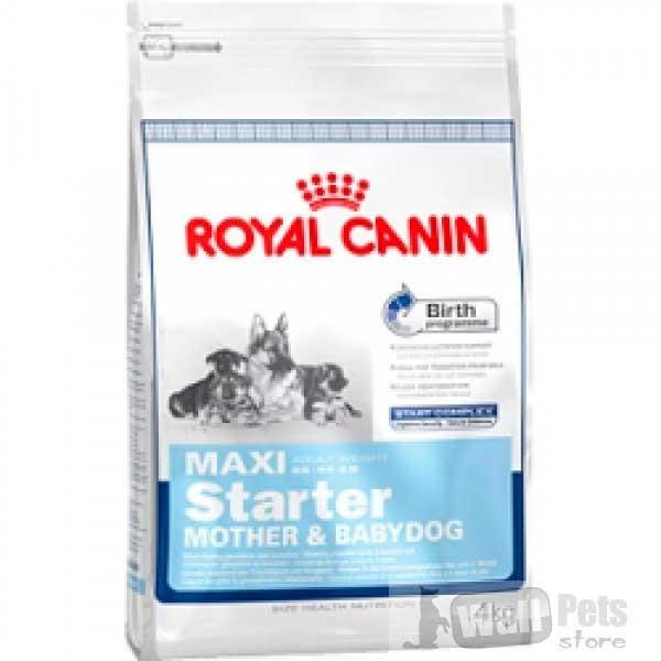 Royal Canin для щенков до 2-х мес. (MAXI STARTER)