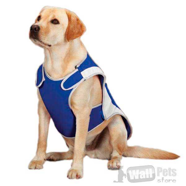 Охлаждающие жилеты для собак