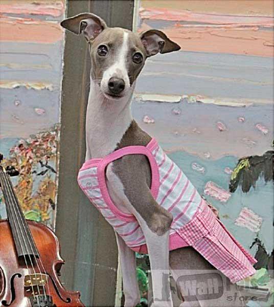 Платье для собак в в клетку