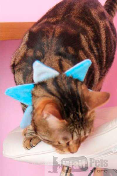 Ошейник на кошку, в виде звезды
