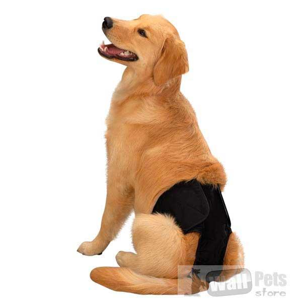 Трусы многоразовые для собак