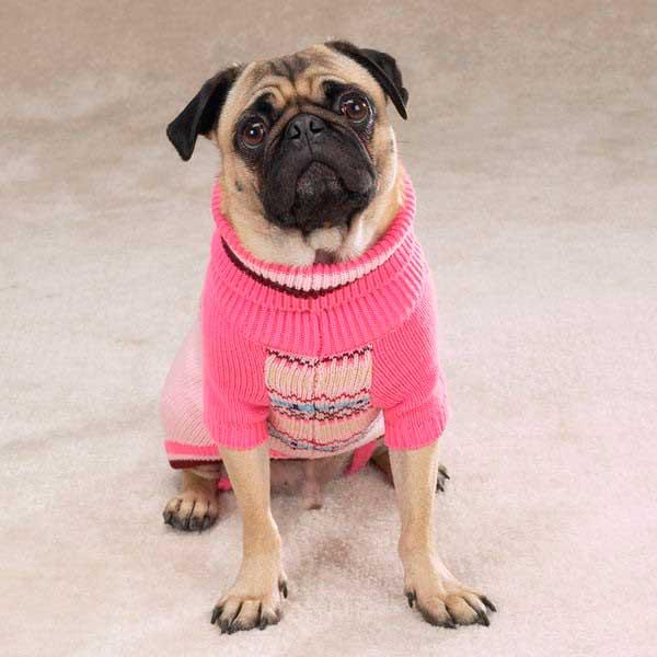 Лыжные свитера для собак