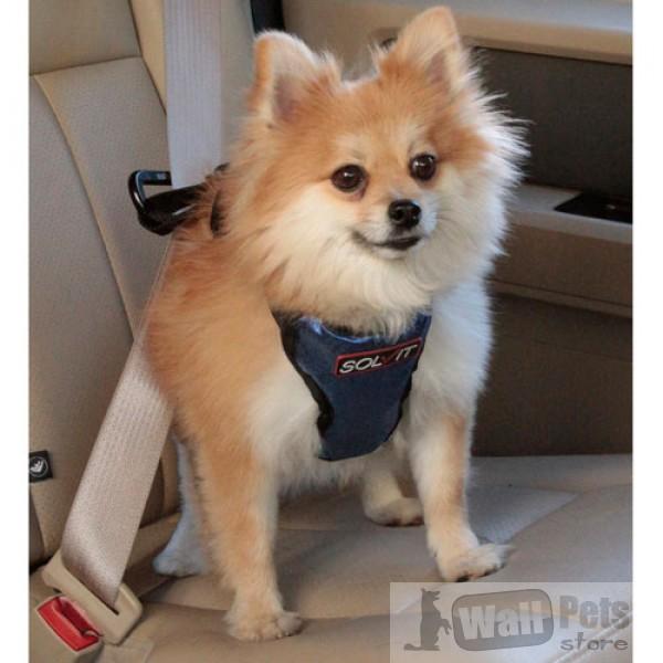 Авто шлейка люкс для мелких собак