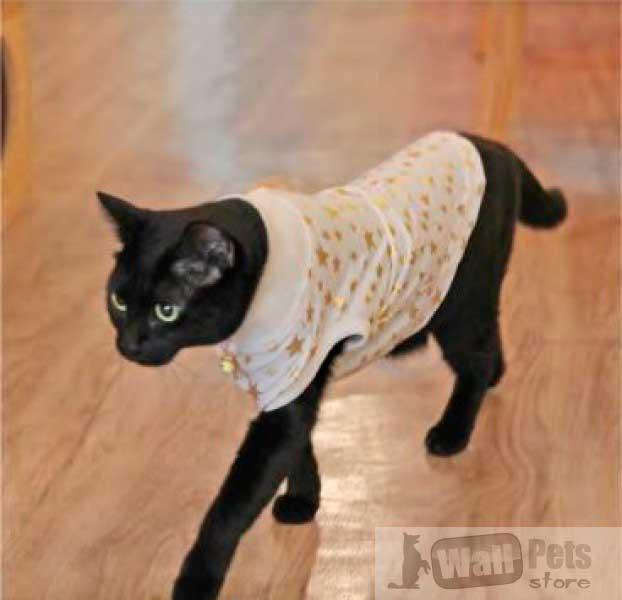 Свитер  для кошек с декоративным цветком ( одежда для кошек)