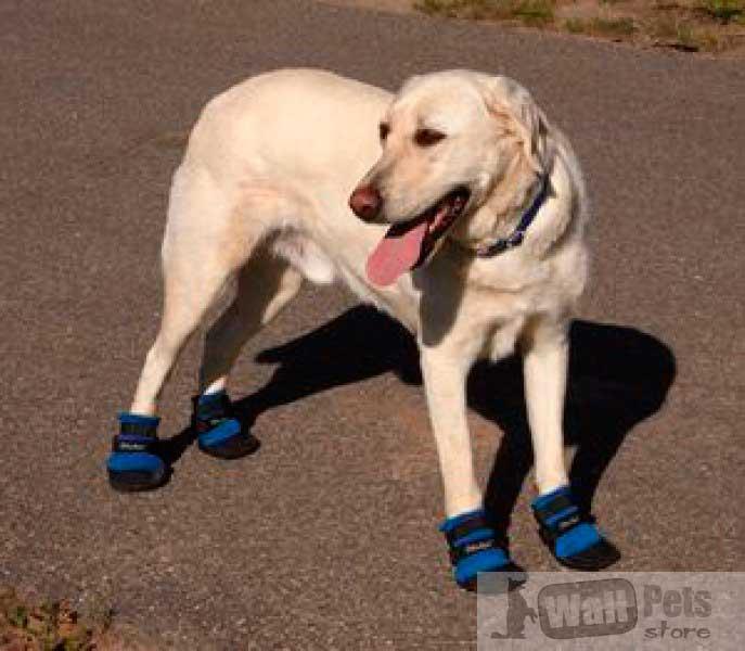 Обувь для собак, охлаждающая