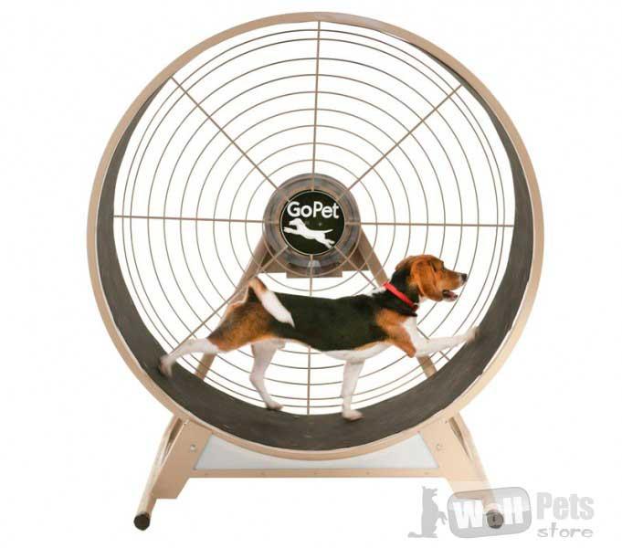 Тренажер для средних и мелких собак