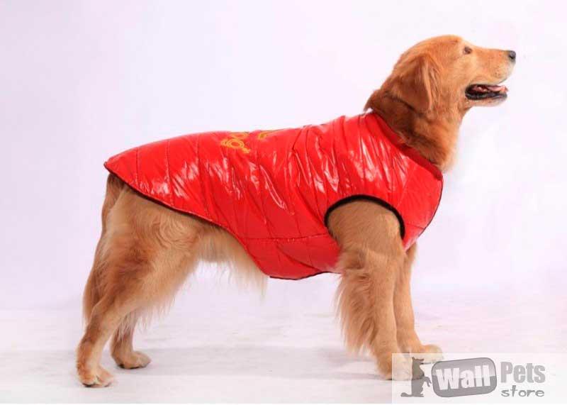 Безрукавки для собак