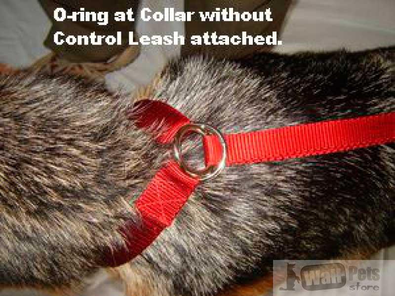 Шлейка для дрессировки, чтобы собака не тянула