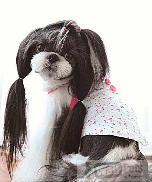 Майка для собак вишенка
