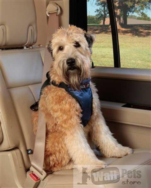 Deluxe авто шлейка для собак (ремень безопасности)