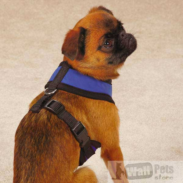Охлаждающие шлейки для собак