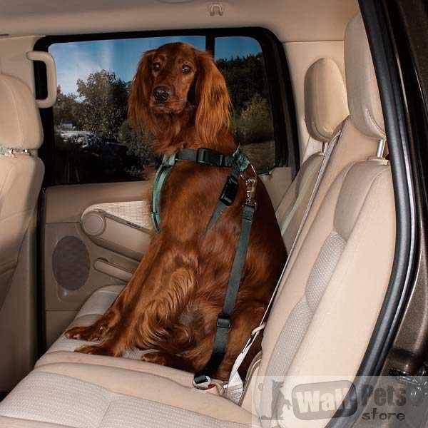 Шлейка  безопасности в машину для собак