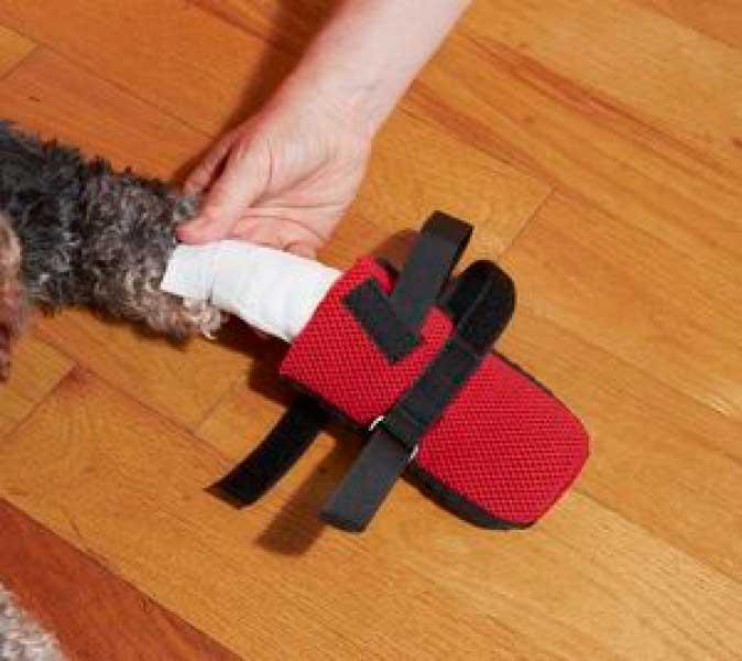 Обувь на больную лапу для собак