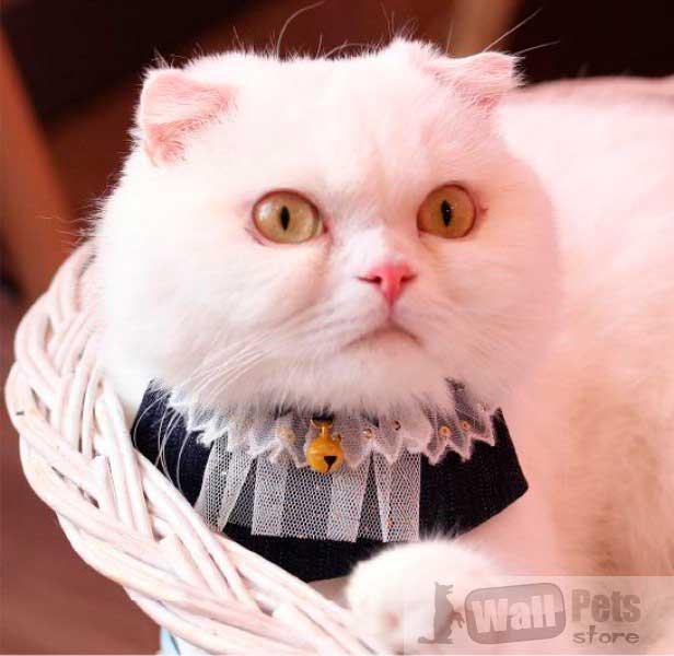 Ошейник на кота фигурный с кружевом