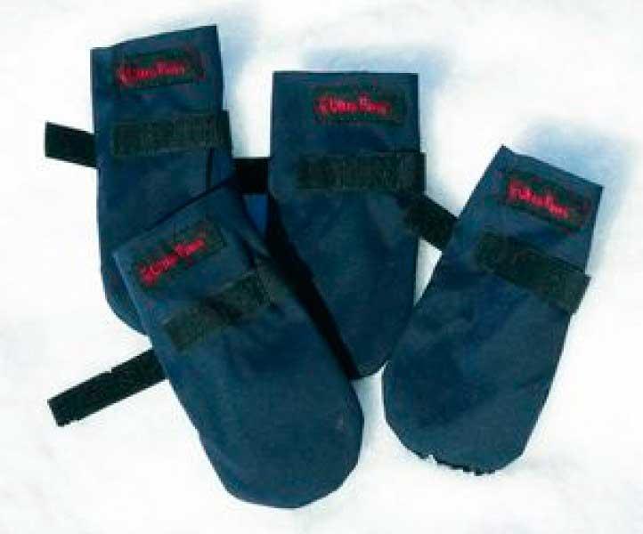 Обувь для зимы для собак