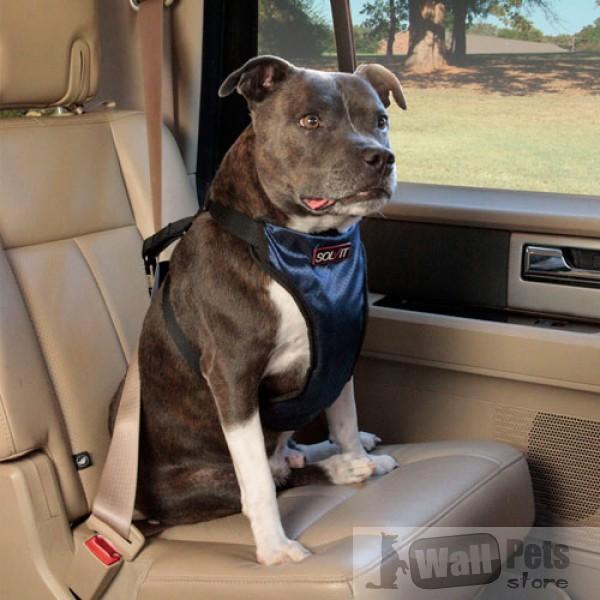 Авто шлейка люкс для крупных собак