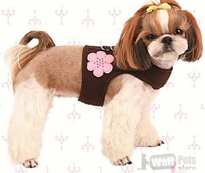 Шлейка для собак цветы