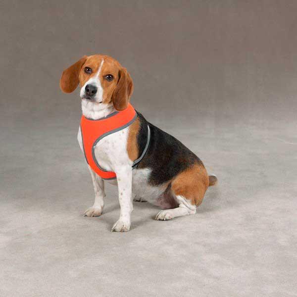 Светоотражающая шлейка для собак
