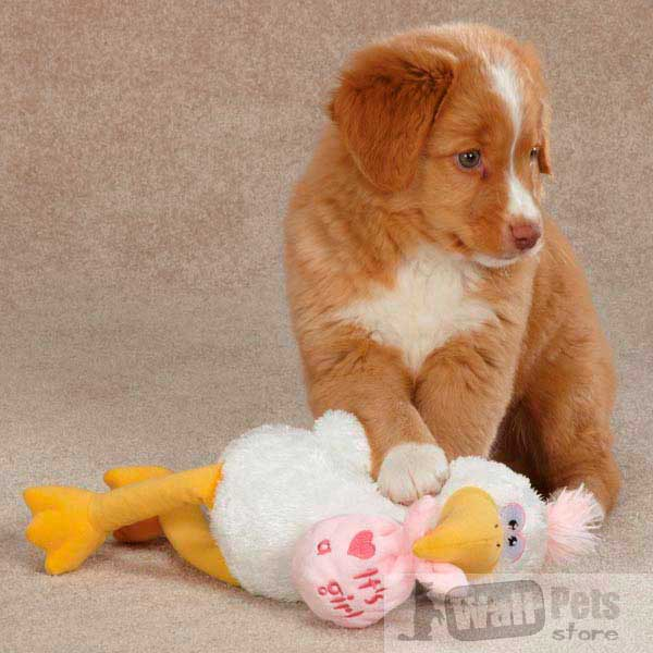Аист игрушка для собак