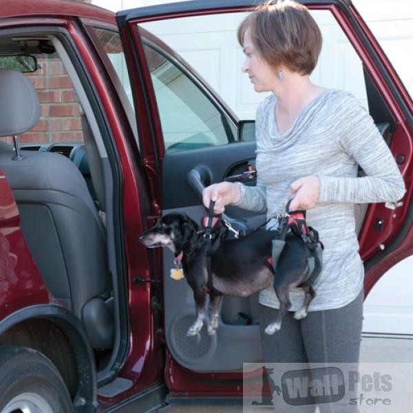 Шлейка для больных и пожилых собак (маленький размер)