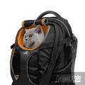 Рюкзак для котов, весом до 13 кг/ G-Train K9 Pack