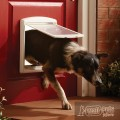 Staywell® Original 2-Way Pet Door для кошек и собак