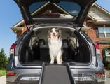 Пандус автомобильный для собак ультра легкий