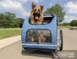 Велотрейлер для собак