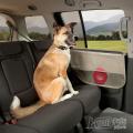 Защита боковых дверей автомобиля
